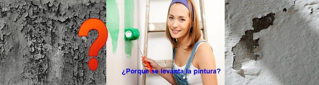 ¿Porque se levanta la pintura de la pared?
